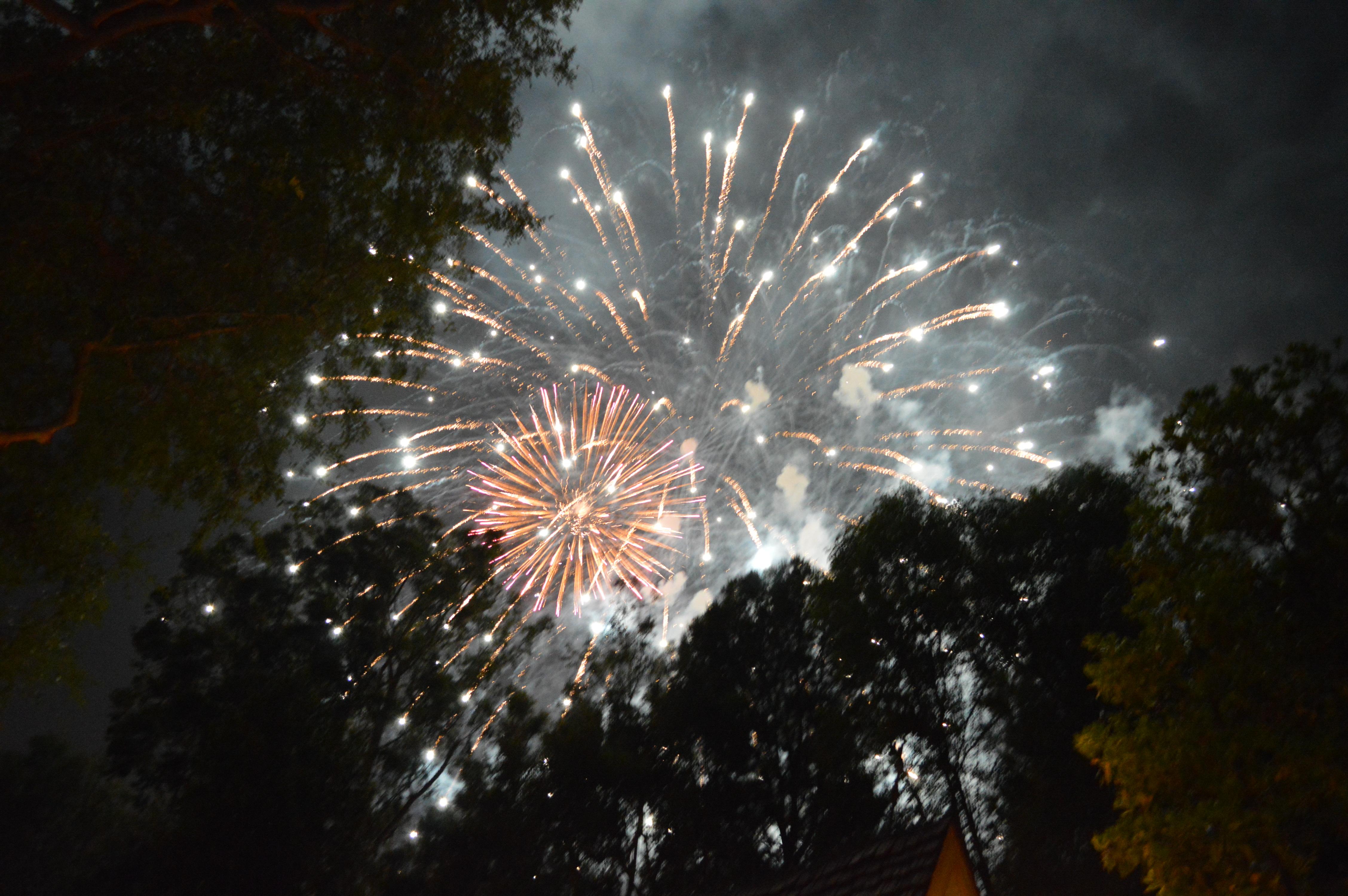 Disneyland vs California Adventure theme park. These are nightly fireworks