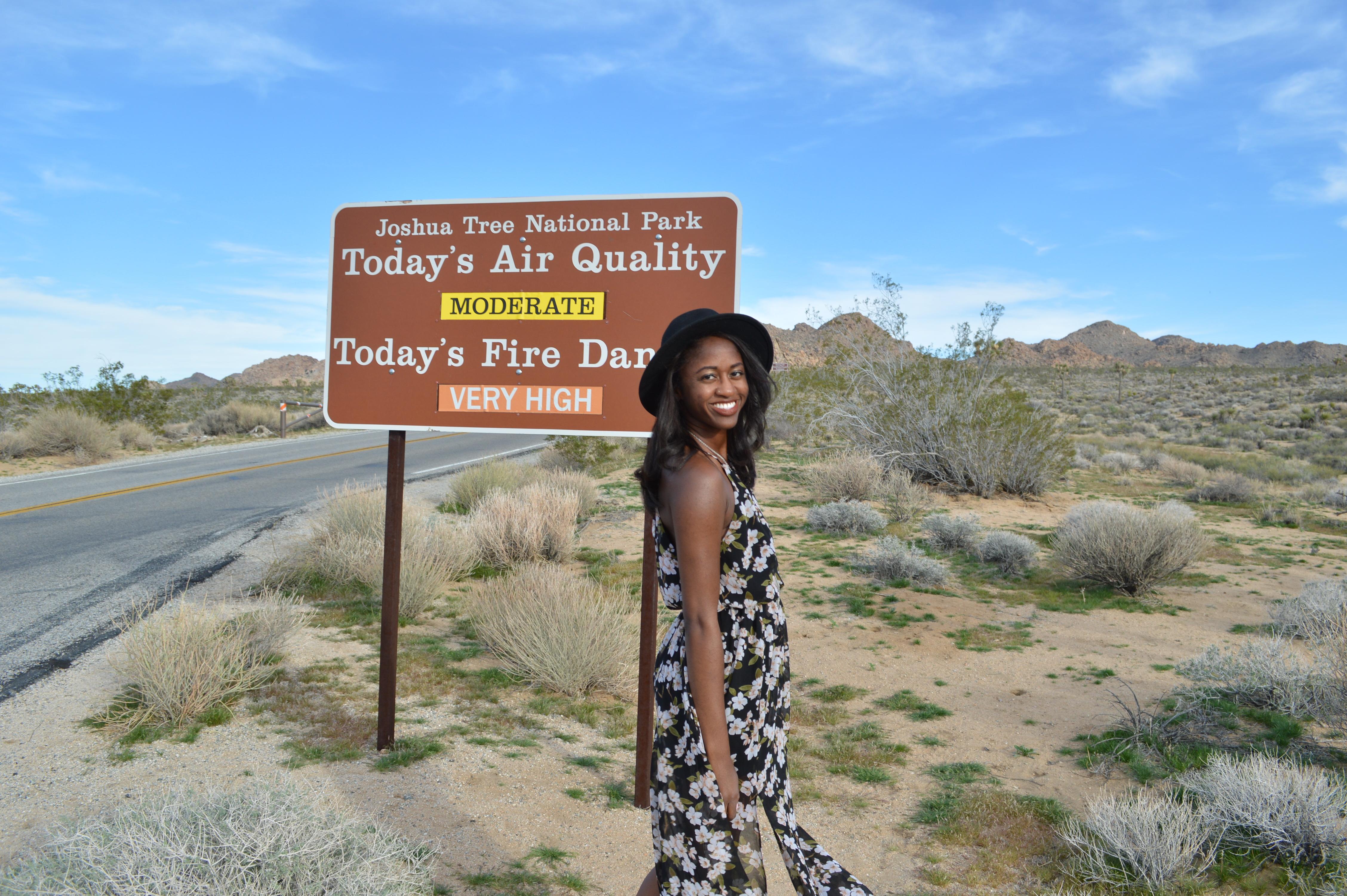 Joshua Tree California A National Treasure in the Desert One